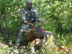 2007 Robert Williams  Elk2